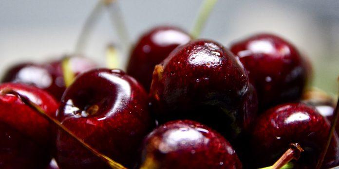 Latin America intelligence news - Cherries
