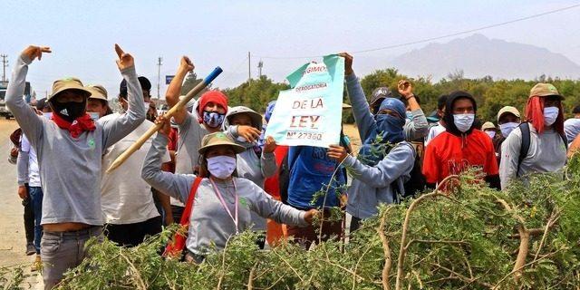 Latin America Intelligence News - Peru farmers